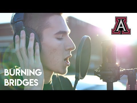 Burning Bridges (Cambridge Diss)