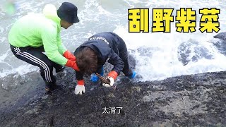 Seaweed was scraped at Xiaoyu Beach, and the wind and waves almost fell into the sea
