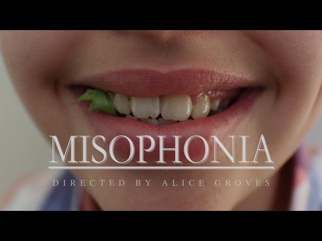 Misophonia is the name for the hatred of loud eating, slurping and