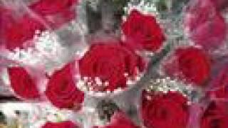 Keşkelerle Süslenen Sonbaharlar - Kırmızı Güller