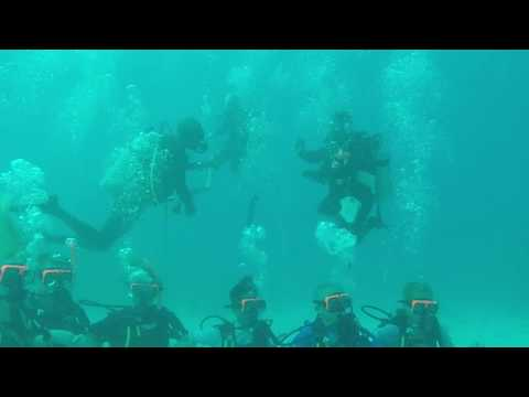 The Deep Blue - Scuba in Jamaica
