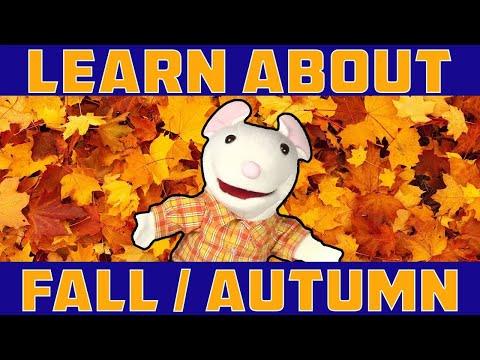 LEARN ABOUT FALL, AUTUMN   learning seasons for children   preschool, kindergarten vocabulary