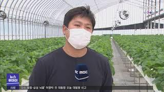 첨단 비닐하우스 빌려드립니다 - R (201029목/뉴…
