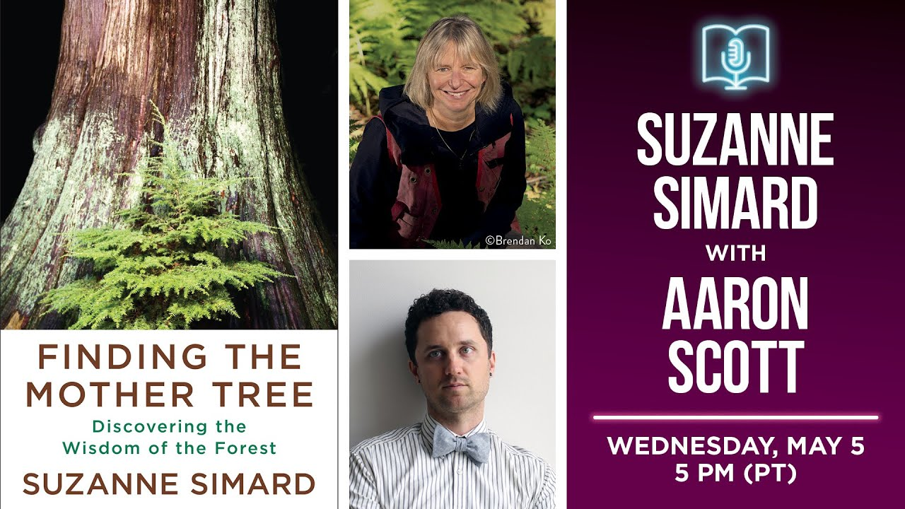 suzanne simard is a professor in the department of forest and conservation sciences at the university of british columbia. Finding The Mother Tree Discovering The Wisdom Of The Forest Suzanne Simard Hardcover 9780525656098 Powell S Books