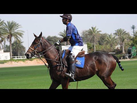 Goals and Plays Ep. 4 feat. Khalid Bin Drai | EMAAR Masters Cup 2020 | Dubai Emirate Polo