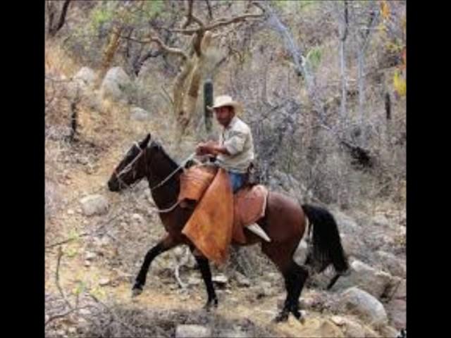 El Ranchero Chido habla de ir a la feria