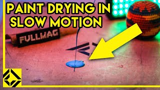Paint Drying in Slow Motion