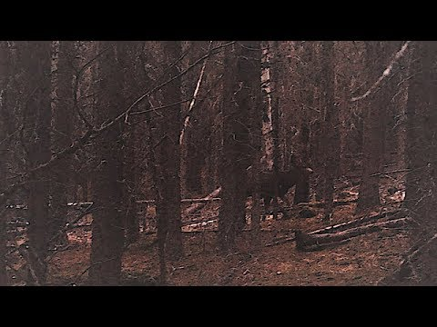 Practical Witchcraft - Trailer 2