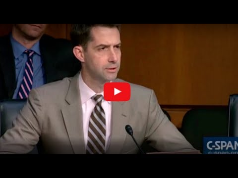 "SENATOR TOM COTTON EXPOSES HILLARY CLINTON AS A ""RUSSIAN AGENT"" ON LIVE TV!"