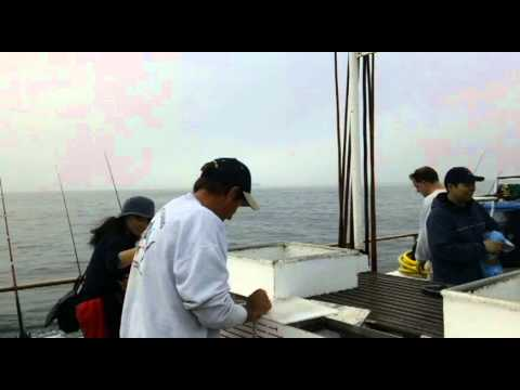VICTORY Deep Sea Fishing Bait Collection and Quality Inspection