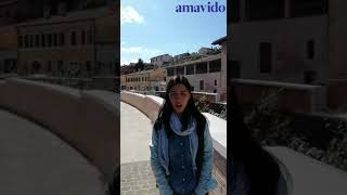 amavido Open Call 2020: Analogic Tour II T. Gavioli