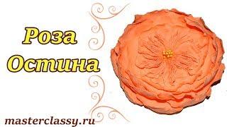 Foam roses tutorial. Очень красивая роза Остина из фоамирана. Брошь с розой из фоамирана: видео урок