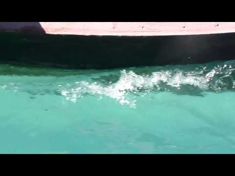 Tour in the Blue Lagoon in Tarawa Island, Western Kiribati -