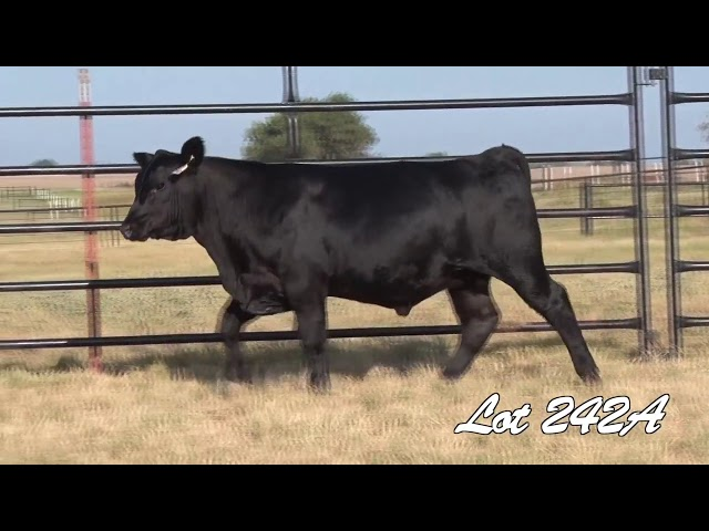 Pollard Farms Lot 242A