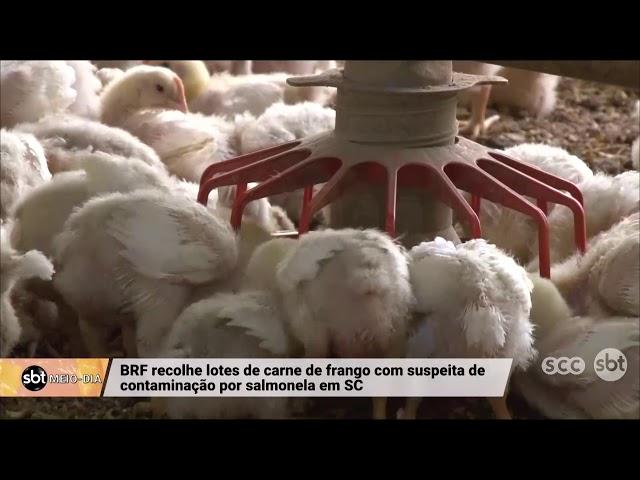 BRF recolhe lotes de carne de frango com suspeita de contaminação por salmonela em SC