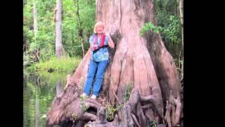 Petie McCarty Video