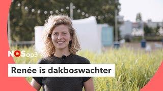 Dakboswachter: klein wonen, maar wel onder de sterren | NOS op 3