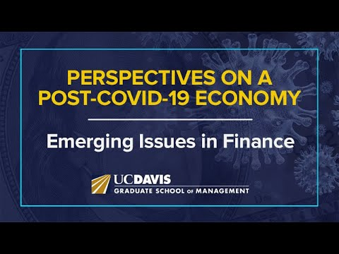 Perspectives on a Post-COVID-19 Economy: Emerging Issues in Finance