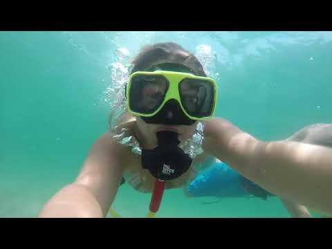 Brownie 3rd lung rental - Fun Diving