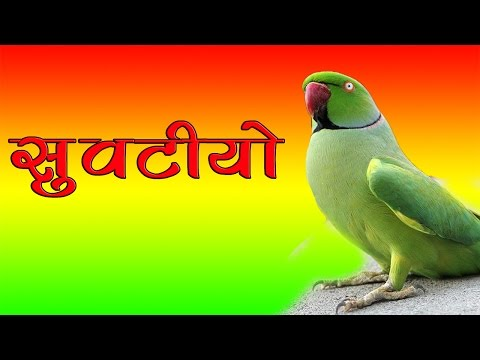 Latest Rajasthani Dj Mix Song | सुवटीयो Suvatiyo | FULL Audio | Superhit Marwadi Dj Songs 2017 New