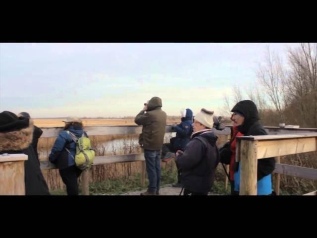 Freezing Hotspots: Impuls Kollum