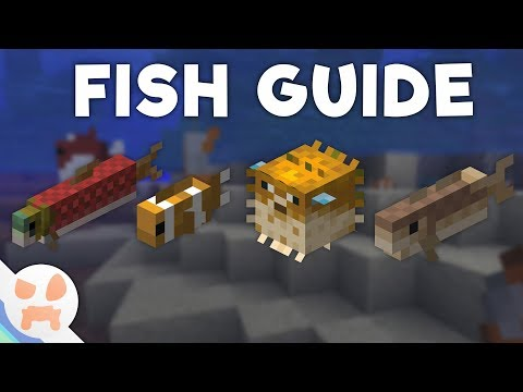 Update Aquatic FISH GUIDE | Variant Differences, Abilities, And More