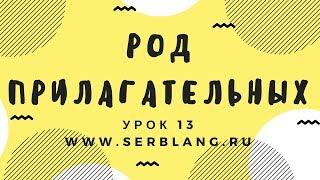 сербский язык. Урок 13. Согласование прилагательных и существительных