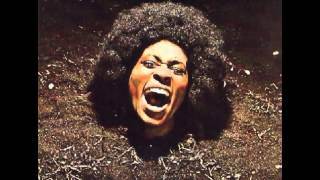 Maggot Brain is the third studio album by the American funk band Fu...