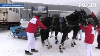 Чемпионат русский троек в Вологде