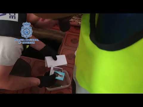 VÍDEO. Así fue el arresto de los integrantes de la red de narcotráfico