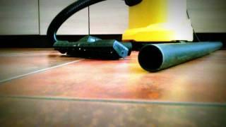 Agama vousatá - Volný chov v bytě - příklad sedmi smrtelných nebezpečí
