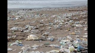 Umwelt Katastrophe - Die Plastikflut – Doku HD