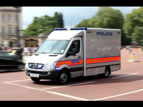 [London Bomb Squad] London Metropolitan Police responding to a unattended bag near Buckingham Palace