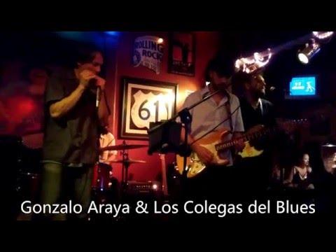 I Need Some Money - Gonzalo Araya & Los Colegas Del Blues
