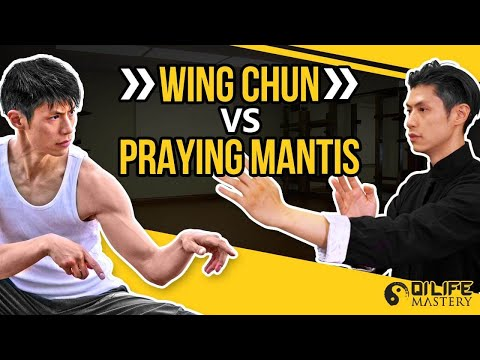Wing Chun Vs Mantis Kung Fu Techniques