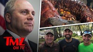 Congressman Hunts Alligators With Trump Jr.   TMZ TV