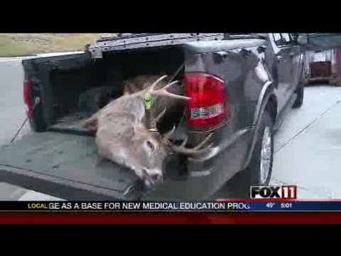 Warm weather causes concern for venison processing