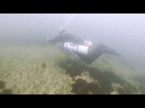 Diving in Gdynia Orłowo (Gulf of Gdańsk, Baltic Sea)