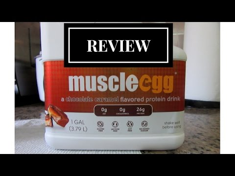 muscle-egg-review