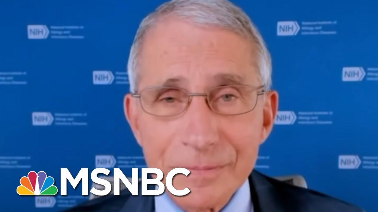 'The System Works': Fauci Assures Trials Will Find A Safe Coronavirus Vaccine | MSNBC