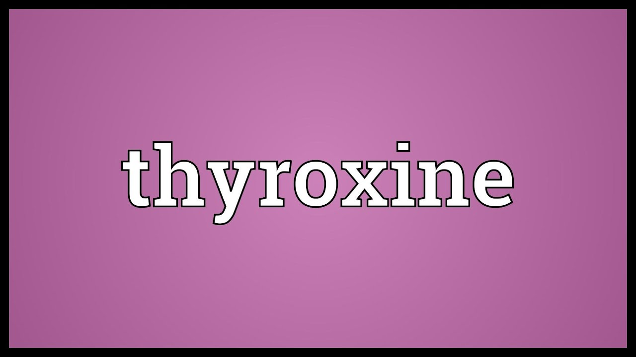 Thyroxine Meaning Youtube