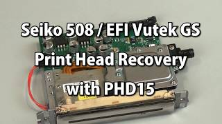 Seiko 508 / EFI Vutek GS Print Head Recovery with PHD15