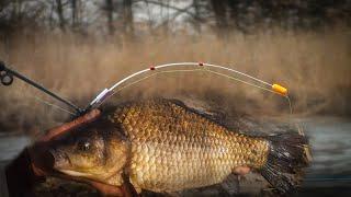 ОПЯТЬ САЗАН КАРАСЬ КРУПНЫЙ НА УДОЧКУ С БОКОВЫМ КИВОКОМ ВЕСНОЙ 2021 рыбалка на карася весной