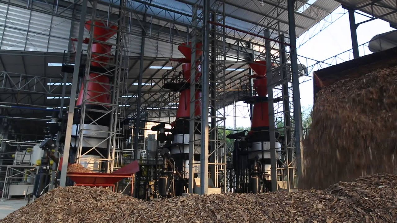 Biomass Gasification Power Plant Sustainable Way