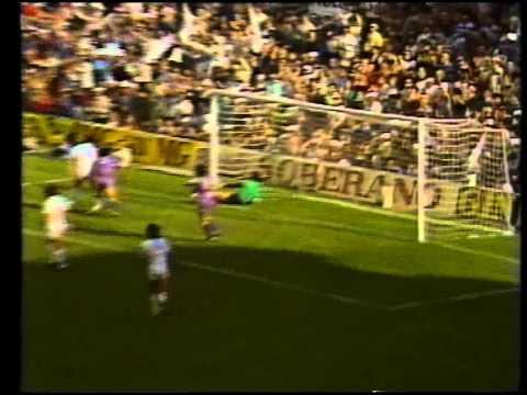 Liga 1982-1983. Resumen Valencia-Real Madrid