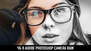 Чб в adobe photoshop camera raw