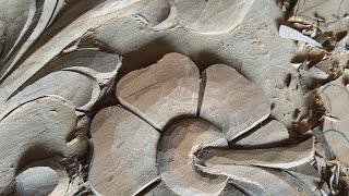 نحت الخشب التعلم التعليمي من المبتدئين نحت الخشب زهرة الفيديو