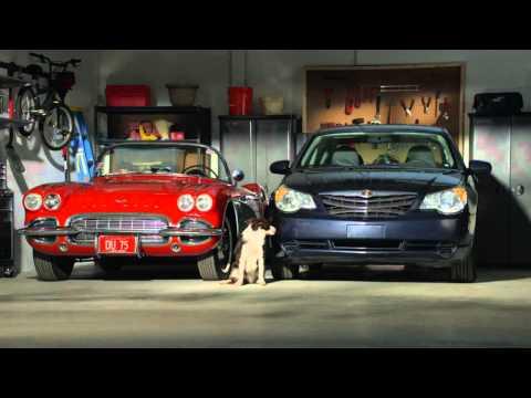 Sta-Bil Ethanol Fuel Treatment-Cars