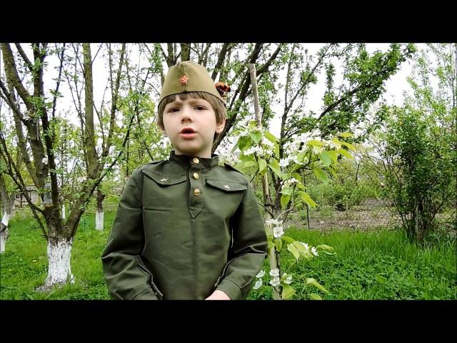 Изображение предпросмотра прочтения – ВладиславТрофимов читает произведение «День Победы» (Разные писатели )