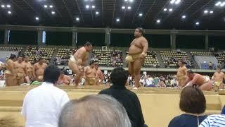 大相撲 渋谷青山学院場所 2017年8/8.